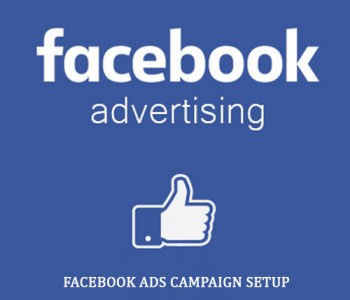 I will Manage Facebook Ads Campaign with Paid Ads & Graphics Design