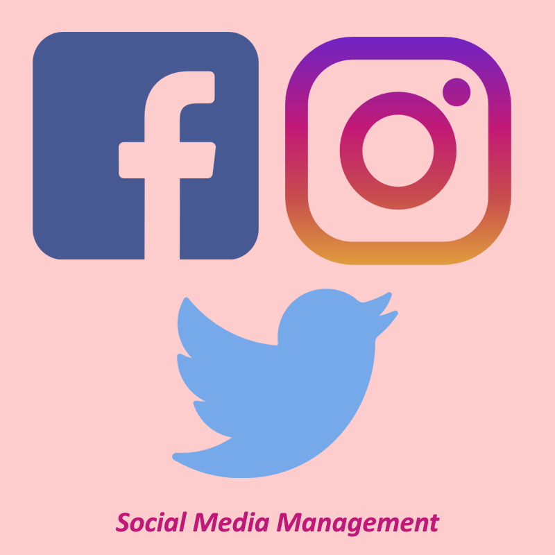 i-will-create-manage-all-types-of-social-media-accounts-and-pages
