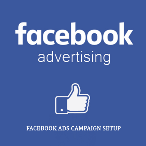 i-will-manage-facebook-ads-campaign-with-paid-ads-graphics-design