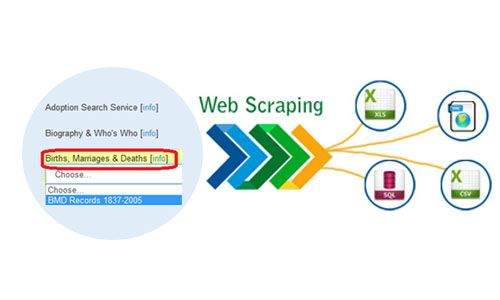 i-will-scrape-the-website-you-want-and-fetch-upto-1000-records-for-just-rs-500