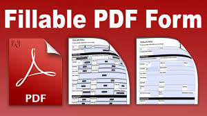 i-will-create-fillable-pdf-form-with-provided-data-in-just-2-days-with-full-accuracy